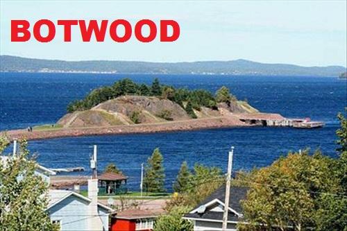 Botwood