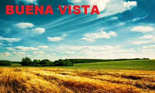Car Title Loans Buena Vista